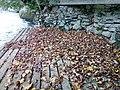Парк природе Ријека Уна 95.jpg