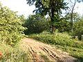 """Парк шума """"Гази Баба"""" 34.jpg"""