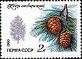 Почтовая марка СССР № 5120. 1980. Охраняемые породы деревьев и кустарников.jpg