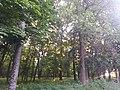 Регіональний ландшафтний парк «Загребелля».jpg