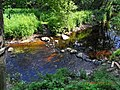Река сизьма - panoramio.jpg