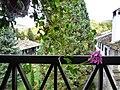 Троянски манастир - panoramio - Красимир Косев (5).jpg