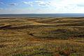 Урочище Утиная гора 7 - panoramio.jpg
