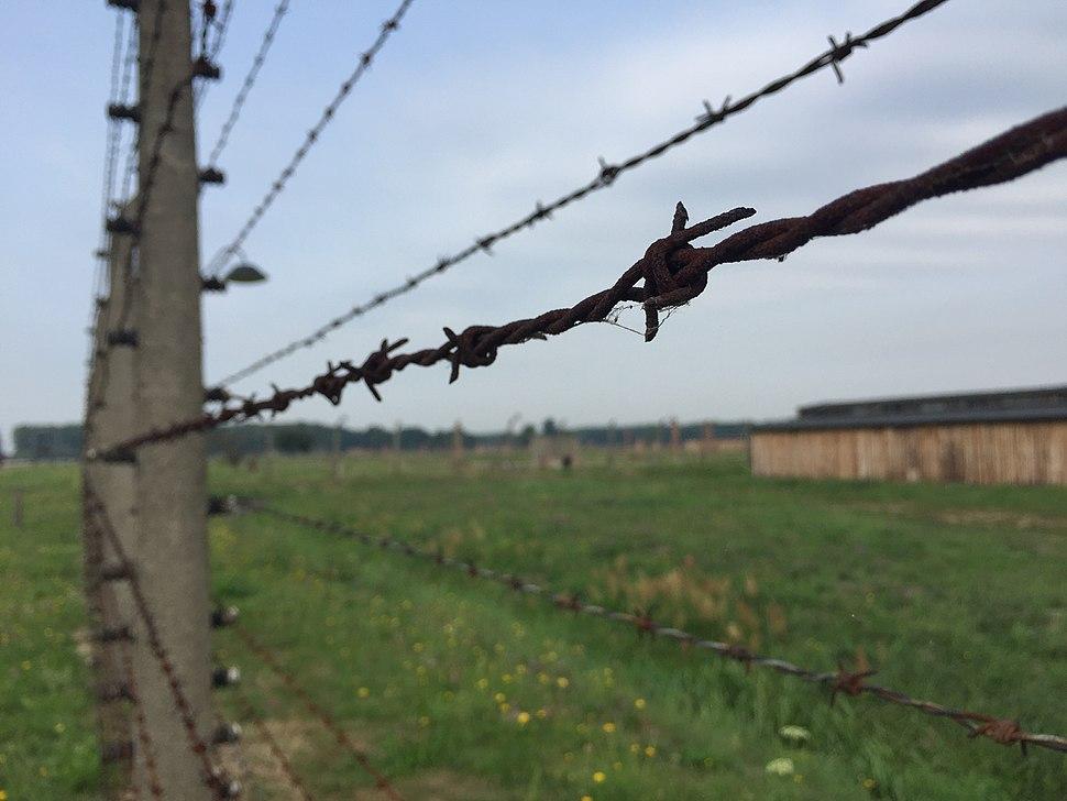 מחנה אושוויץ Auschwitz camp
