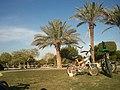 حديقة الروضة 12-2011 - panoramio (2).jpg
