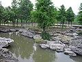 七桥瓮湿地公园 - panoramio (3).jpg