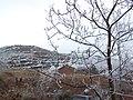 大蒿地 树挂 - panoramio (1).jpg