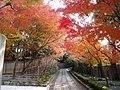 東福寺(051128) 28.JPG
