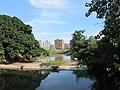桐溪 - panoramio.jpg