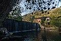 106 Gizaburuaga - Bengolea burdinola.jpg