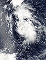 10W 2006-08-05 0445Z.jpg