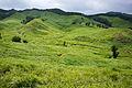 130803 Tonomine highland Kamikawa Hyogo pref Japan12bs3.jpg