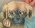 1888 Dog art detail, from- Confusion - Weir Collection (cropped).jpg
