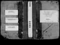 1902 рік. Метрична книга села Воскресенське Херсонського повіту.pdf