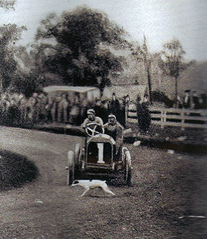 Hubert Le Blon - The 1906 Vanderbilt Cup at Long Island. Hubert Le Blon in an oversteering Thomas, the first car to start, encounters a dog.