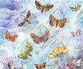 2005. Ночные бабочки.jpg