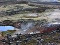 2006-05-22-113040 Iceland Hveragerði.jpg