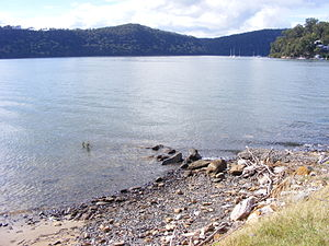 Hawkesbury River - Looking north–east across the Hawkesbury River, with Dangar Island to the right of the image.