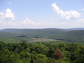 2012-08-22 View of Bear Meadows in Pennsylvania in Rothrock State Forest from the Mid-State Trail to the northwest.jpg