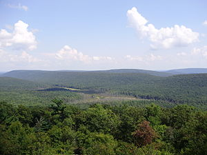 Rothrock State Forest - View of Bear Meadows Natural Area from the Mid State Trail.