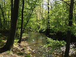 2013-05-04 15 37 44 View down the Shabakunk Creek just below Colonial Lake in Colonial Lake Park, Lawrence Township, New Jersey.jpg