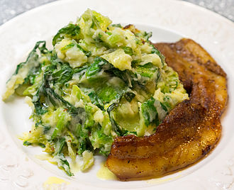 Stamppot - An andijviestamppot (endive mashed with potatoes) served with a slice of butter-fried belly pork and butter gravy
