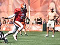 2015 Cleveland Browns Training Camp (19623905764).jpg