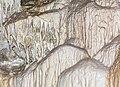 2015 Jaskinia Niedźwiedzia w Kletnie, szata naciekowa 07.jpg