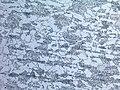 20180323 - ferrite perlite 500x.jpg