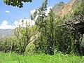 20 - panoramio (7).jpg