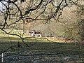 2 donkeys 1 head - geograph.org.uk - 1152073.jpg