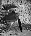 A-light-bomber-Northrop-B-5-undercamouflage-net-142348192075.jpg