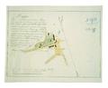 AGAD Łomża map 1811.png
