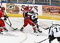 AHL (8112674090).jpg