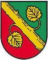 AUT Alberndorf in der Riedmark COA.jpg