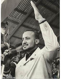 عبد الرحمن البيضاني ويكيبيديا