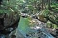 Adams Brook (near East Dover, Green Mountains, Vermont, USA) 8.jpg