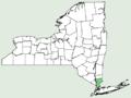 Aegilops crassa NY-dist-map.png