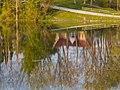 Afternoon Lake Reflections (157328931).jpeg