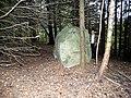 Akmuo Varkalių miške.JPG