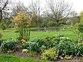 Alby Gardens - geograph.org.uk - 774368.jpg