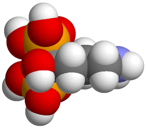 space-filling structure of alendronic acid, ba...