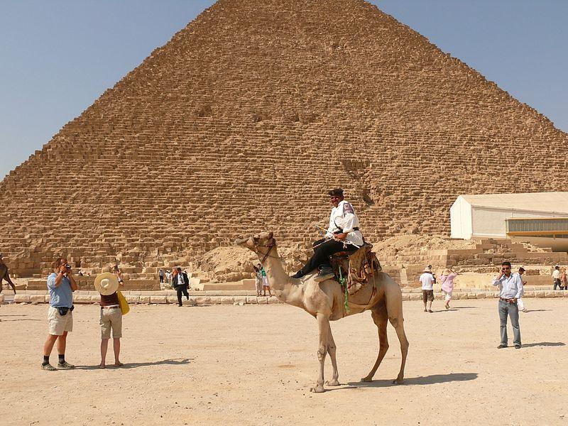 File:Alig police camel 455.jpg