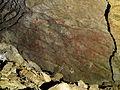 Altxerri cave - Big Bison.jpg