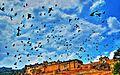 Amer fort Jaipur.jpg