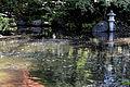Anderson Japanese Gardens Rockford Illinois.jpg