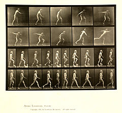 Animal locomotion. Plate 519 (Boston Public Library).jpg