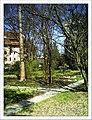 April Freiburg Botanischer Garten - Master Botany Photography 2013 - panoramio (12).jpg