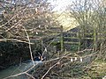 Aqueduct - geograph.org.uk - 316886.jpg