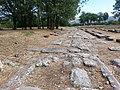 Area archeologica di Grumentum. Decumano massimo.jpg